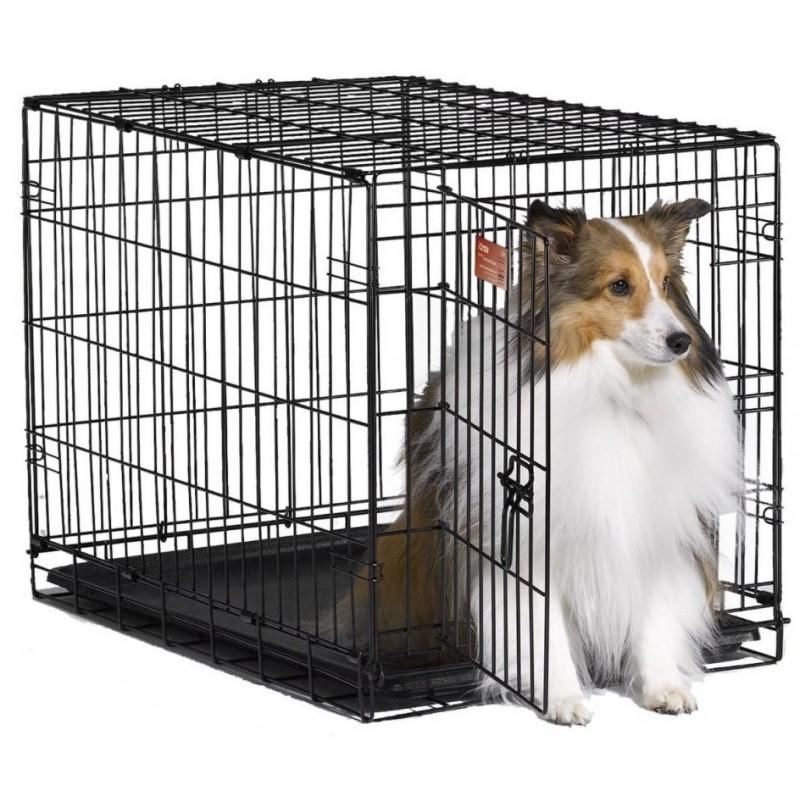 Рыбка декоративная 2215CW, 55*15*40мм