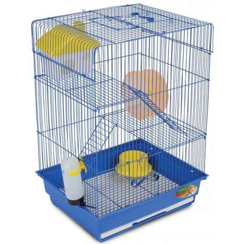 АРАВАНЫ И РЫБА-БАБОЧКА (цвет) Гуржий А.Н.